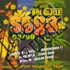 Various Artists - Rougaille Sega 08/09
